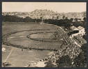 Auckland Domain, south/west bordering Carlton Gore...