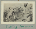 Inscription on page in album reads:  Our Indian Co...