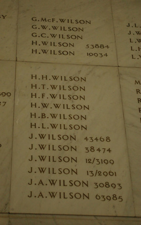 Auckland War Memorial Museum, World War 1 Hall of Memories Panel Wilson, G.McF. - Wilson, J.A. (photo J Halpin 2010) - No known copyright restrictions