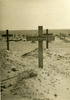 Wooden cross on his grave, El Alamein War Cemetery - This image may be subject to copyright