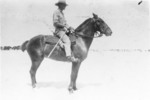 Lieutenant Allison mounted on his horse, Photographer A. Rhodes in E.G. Williams Album No 213, p 29, Auckland War Memorial Museum Library - No known copyright restrictions