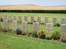Grave row photo, Medjez-el-Bab War Cemetery, Tunisia (photo B. Coutts, 2009) - This image may be subject to copyright