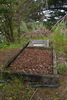 View of grave for G. A. Harris 8/3288 - No known copyright restrictions