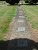 Gravestones in row, Hautapu Cemetery, Cambridge (photo Sarndra Lees, January 2010) - Image has All Rights Reserved.