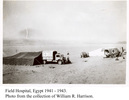 Field Hospital, Egypt, 1941-43, showing Red Cross truck and tents. - This image may be subject to copyright