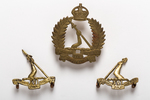 New Zealand regimental badge: 16th (Waikato) Regim...