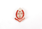 Queen Alexandra Royal Nursing Corps Association ba...