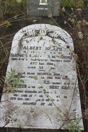 Grave site  at Waikumete Cemetery, Auckland, for Albert Joseph Grover (31991). Image provided by Hugh Grenfell, March 2016. © Auckland Museum CC BY.