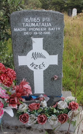 Grave site  at Waikumete Cemetery, Auckland, for Tana Taumataua (16/1165). Image provided by Hugh Grenfell, March 2016. © Auckland Museum CC BY.