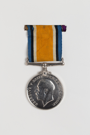 medal, campaign, 1994.92, N2946.1, Photographed by: Julia Scott, photographer, digital, 21 Mar 2017, © Auckland Museum CC BY
