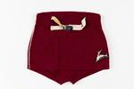 Men's Speedo woollen swimming trunks burgundy colo...