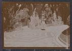 "Unknown, photographer (1915-1916). ""Zoo gardens, Sis. Commons"". [Agnes (Peggy) Williams photograph album]. Auckland War Memorial Museum - Tāmaki Paenga Hira PH-2017-2-1-p23-1. No known copyright restrictions."