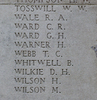 Headstone of Private William Wyndham Tosswill (12514). Tyne Cot Memorial, Zonnebeke, West-Vlaanderen, Belgium. New Zealand War Graves Trust (BEEH7922). CC BY-NC-ND 4.0.