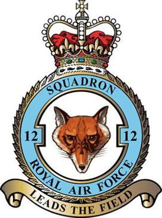 12 Squadron RAF Badge