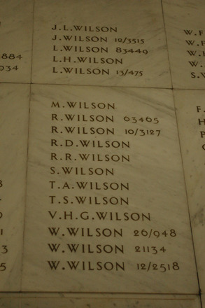 Auckland War Memorial Museum, World War 1 Hall of Memories Panel Wilson, J.L. - Wilson, W. (photo J Halpin 2010) - No known copyright restrictions