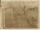 Graves of New Zealand Rough Riders, Trooper Luke Perham (on left) and Lieutenant Henry L. Bradbourne, at Bokfontein Farm, about 7 miles north-west of Commando Nek. - No known copyright restrictions