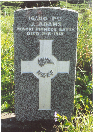 Headstone, Pawarenga Church Cemetery (photo R Beddoes) - No known copyright restrictions