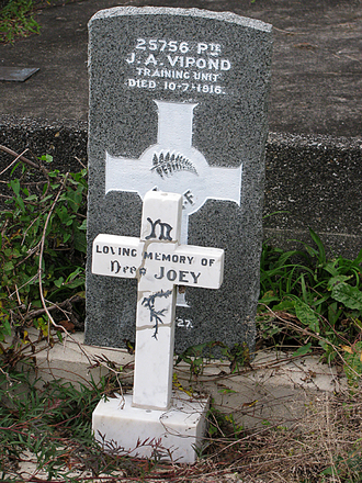 Headstone, Joseph Alon Vipond, Matakana Cemetery (provided by Sarndra Lees 2012) - Image has All Rights Reserved.