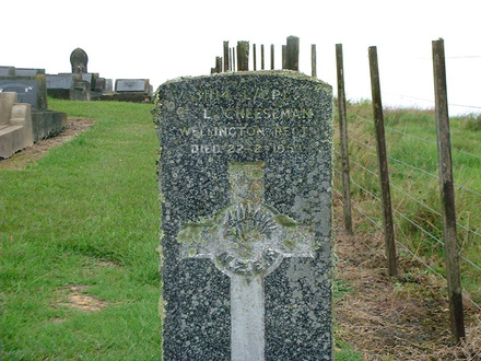 Headstone of Clarence Leslie CHEESEMAN 3114, Kawakawa Cemetery - No known copyright restrictions