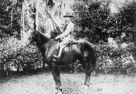 James W Burdett, on horse, holding rifle, bandolier, 1896 pattern triangular socket bayonet hanging from his belt, horse furniture is the correct NZMR saddle (pat 1902) and bridle; coconut palms in background. - No known copyright restrictions