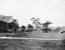 Flying boats in front of three hangars at the Walsh brothers flying school - No known copyright restrictions