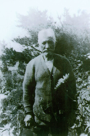 Portrait of William Johnson, taken in a garden amongst the flowers - No known copyright restrictions