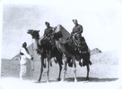 "Group, 2 soldiers on camels, Norman (on the right) and an unidentified friend. Norman had written the following narration on the back of this photo- ""My mate of the same tent & myself. Riding a camel is like being on the top deck of an ocean liner. Ha! Ha! Dec 28th 1940"" - This image may be subject to copyright"
