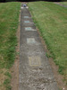 Gravestones in a row, Hautapu Cemetery (photo Sarndra Lees January 2010) - Image has All Rights Reserved.