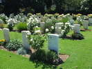 Group of graves in Sydney War Cemetery, including those of the two New Zealanders buried there.(photo G Fortune 2006) - Image has All Rights Reserved