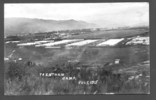 Trentham Camp, July 1915, photograph, postcard stamped (front) Postcard, divided, not franked, was glued into something and back is largely obscured - No known copyright restrictions