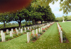 Wide view, Forli War Cemetery, (Photograph Lesley Morley 2008) - This image may be subject to copyright