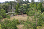 View from above the Harding family burial plot, Dargaville (photograph S Park NZHPT 2010) - No known copyright restrictions