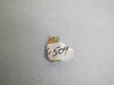 1995x1.509, sherd