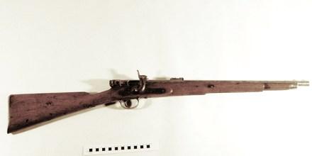 carbine W1701