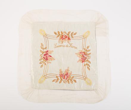 cover, cushion W2985