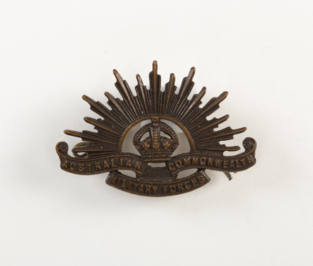 badge, regimental W2941