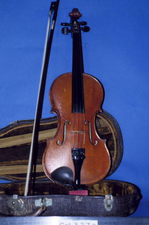 violin [col.3279]