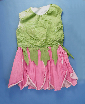 fancy dress costume - front [2002.104.1]