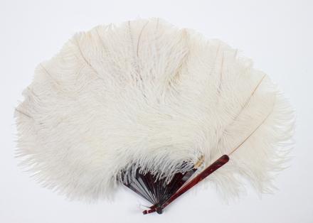 fan, ostrich feather