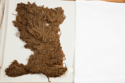 kakahu, 2016.x.165, Photographed by Andrew Hales, digital, 11 Aug 2016, © Auckland Museum CC BY