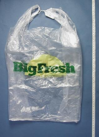 bag [1999.179.14]