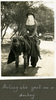 """""""Acting the goat on a donkey"""", Photo Album in Egypt of 638 Charles Honori Parks. Image kindly provided by Parks family. Image has no known copyright restrictions."""