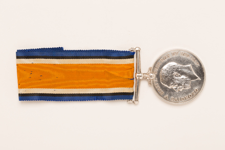 medal, campaign, 1971.56, N1478, Photographed by: Rohan Mills, photographer, digital, 21 Dec 2016, © Auckland Museum CC BY
