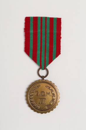 medal, campaign, N2830, Photographed by: Julia Scott, photographer, digital, 14 Feb 2017, © Auckland Museum CC BY