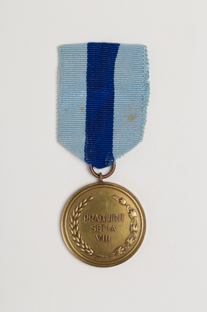 medal, campaign, N2831, Photographed by: Julia Scott, photographer, digital, 14 Feb 2017, © Auckland Museum CC BY