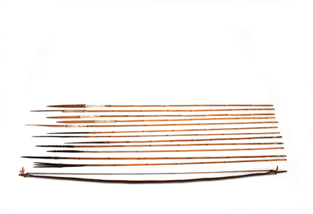 Bow and arrows; Papua New Guinea; 2016.85.26; 56771.26