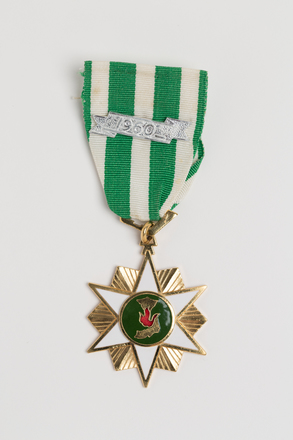 medal, campaign, 1996.166.2.1, Photographed by Julia Scott, digital, 01 Mar 2017, © Auckland Museum CC BY