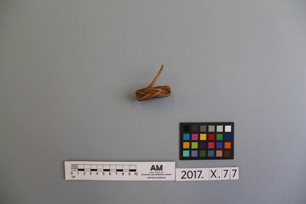 2017.x.77, fragment