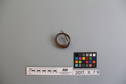 2017.x.79, fragment