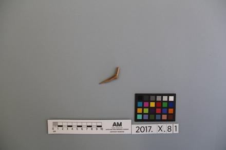 2017.x.81, fragment